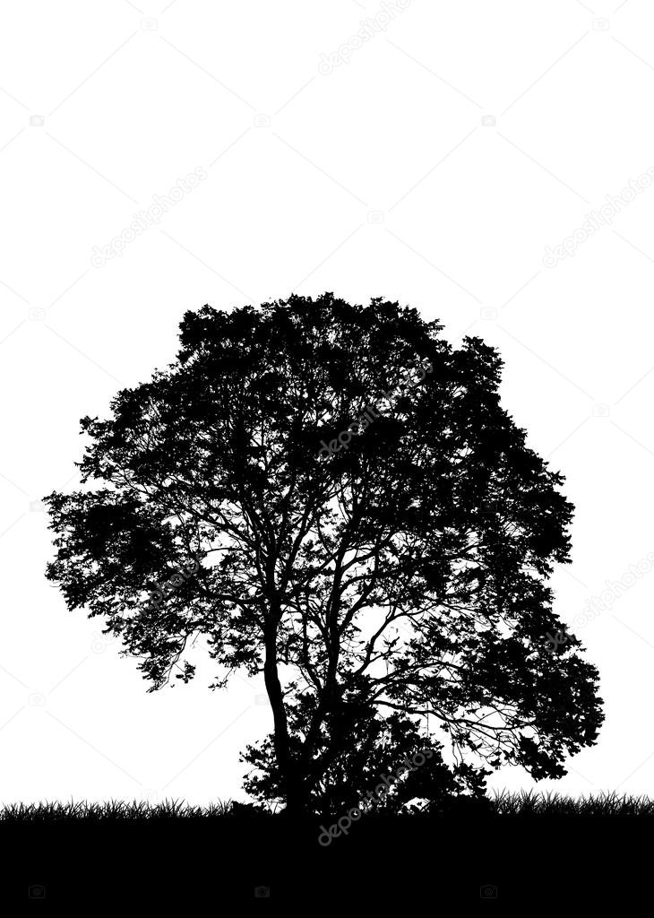 tree silhouette, flowers and grass, black and white  shape