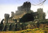 Fotografie castle