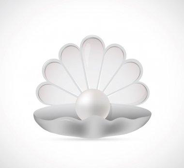 Shell pearl cartoon