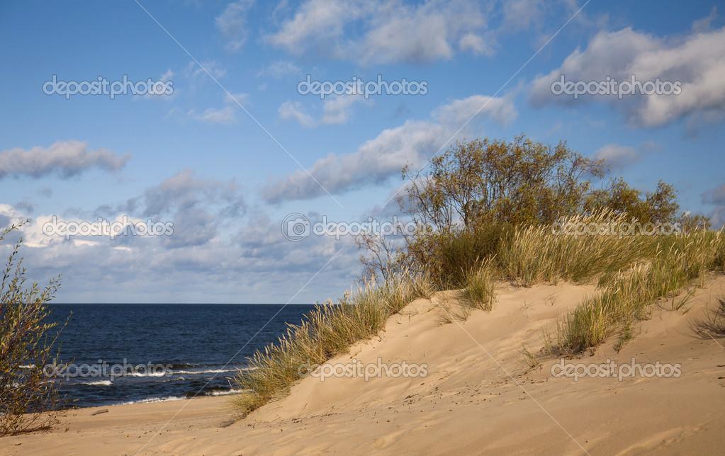 Sea shore with cloudscape