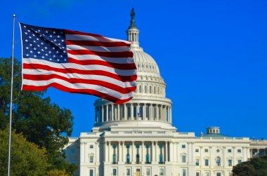 USA Flag and Capitol Building, Washington DC stock vector