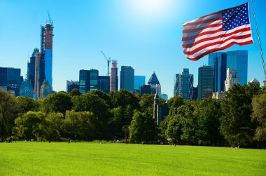 Park of New York with Flag