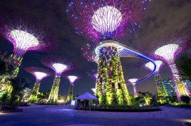 Night view of Supertree Grove at Gardens