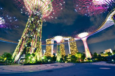 Night view of The Supertree Grove at Gardens by the Bay in Singapore