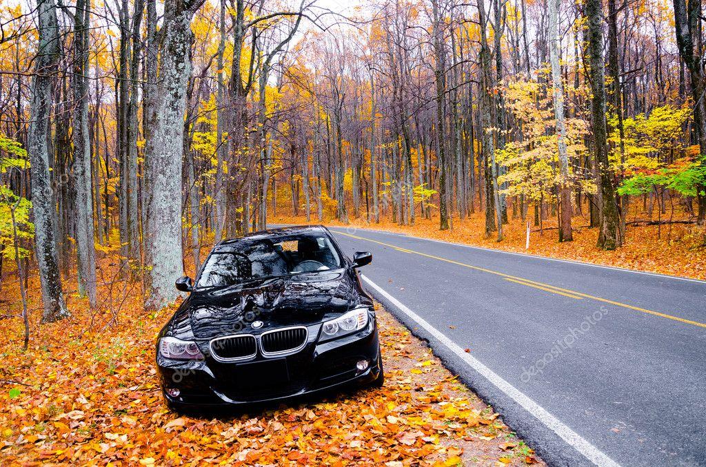 Ремонт двигателя BMW 3