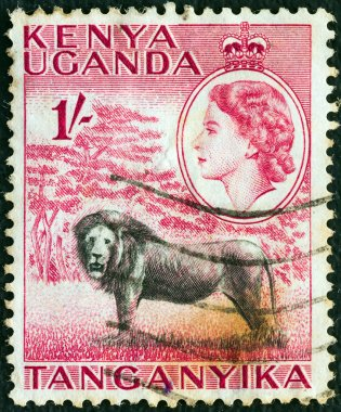 KENYA UGANDA TANGANYIKA - CIRCA 1954: A stamp printed in Kenya Uganda Tanganyika shows a lion and Queen Elizabeth II, circa 1954.