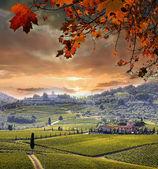 Fotografie Chianti-Weinberg-Landschaft in der Toskana, Italien
