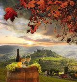 Bílé víno s sudem na vinici v Chianti, Toskánsko, Itálie