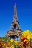 Eiffelova věž během jara v Paříži, Francie