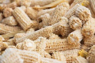 Cob meal Ground corn cob