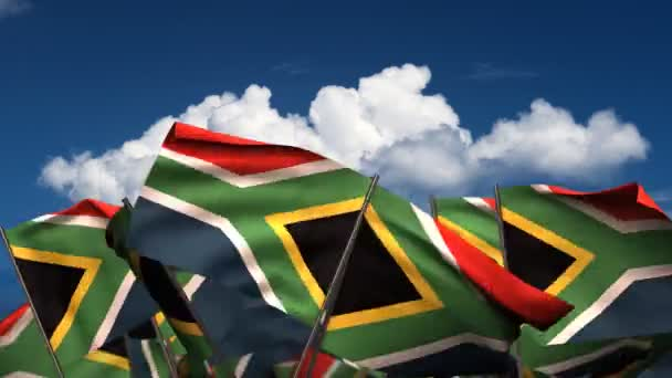 Waving South African Flags