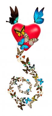 Red valentine heart with butterfly
