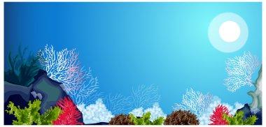 Underwater carols and weeds
