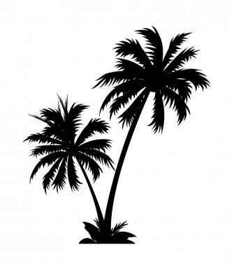 Vector icon palm tree