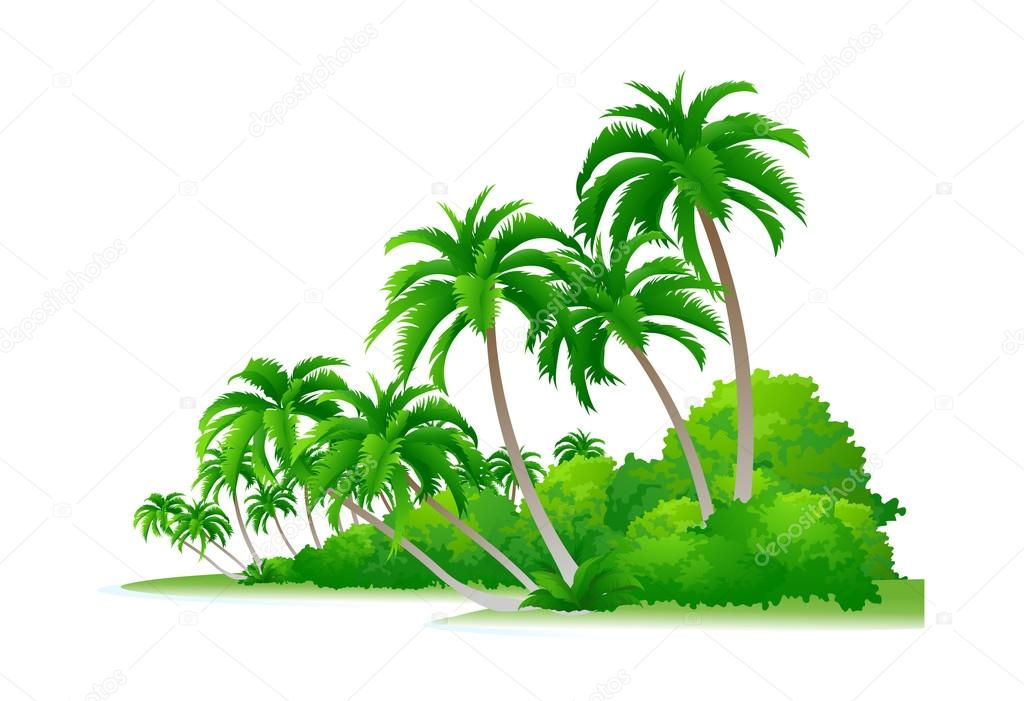 Vector icon palm tree and bush