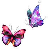Photo Butterflies