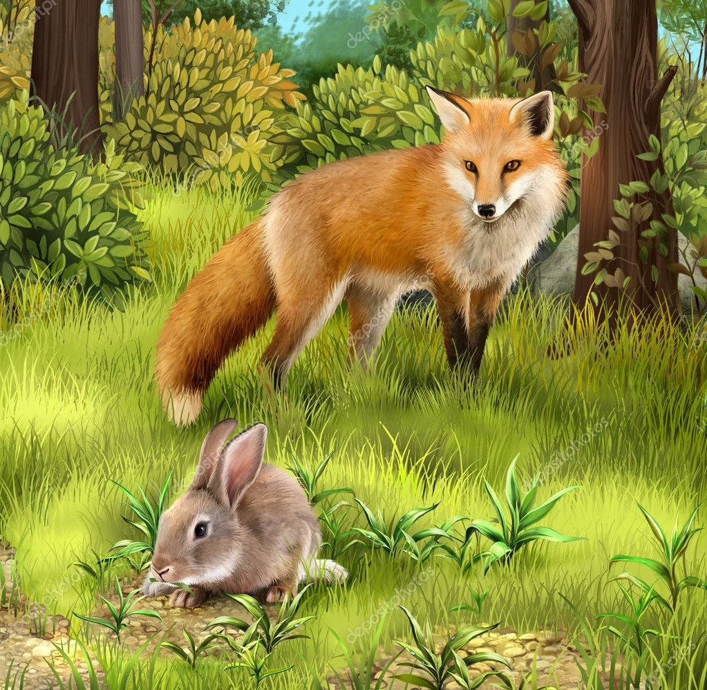 Gray hare eating grass. Hunting fox in the forest.