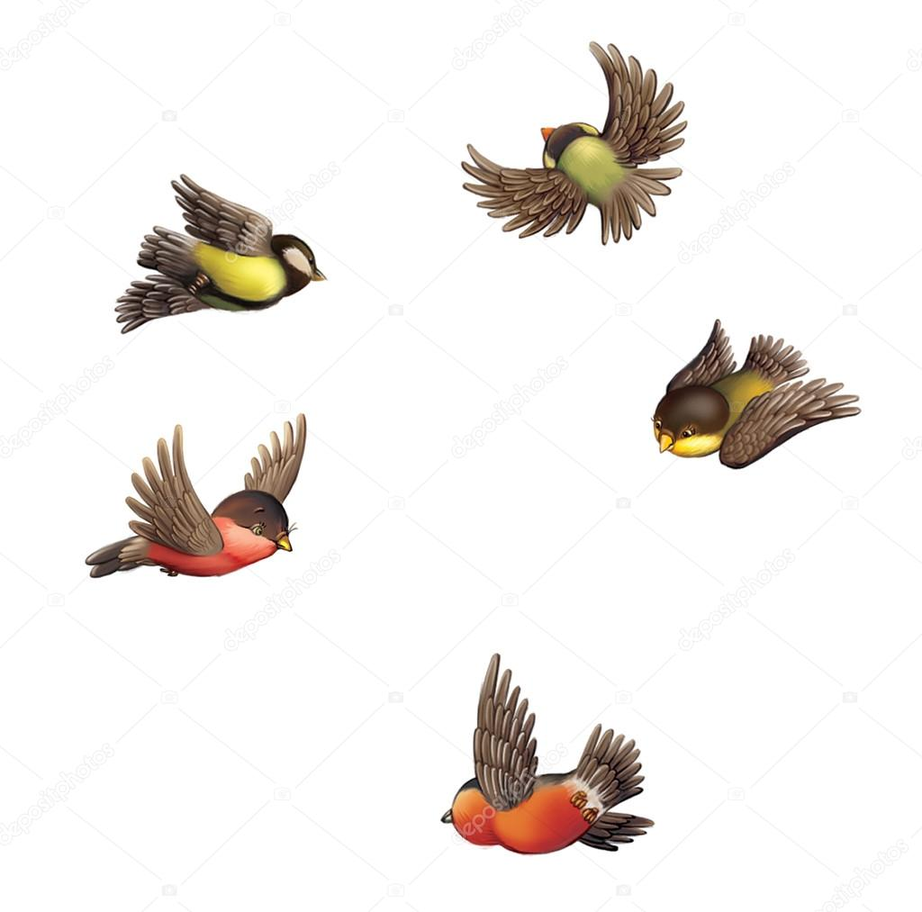 Flying bullfinches and tits.