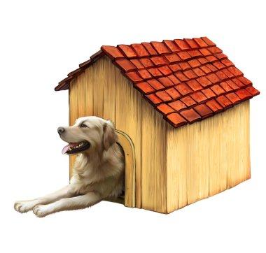 Dog in a dog house. Golden retriver