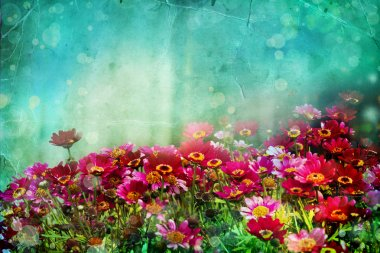 Beautiful spring background with little red and pink flowers