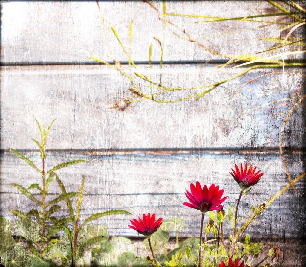 Red Flowers On A Background Of Wooden Wall Retro Rustic Vintage Card Fresh With Sun Blur Spring Summer