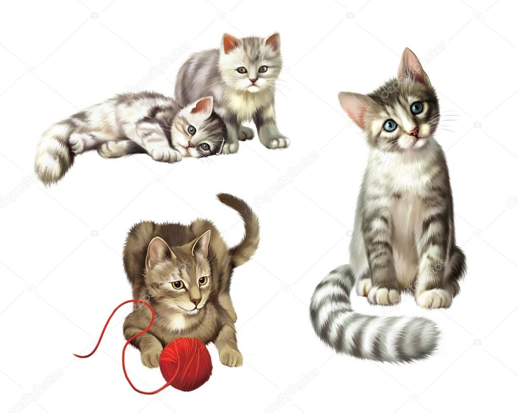 Playing cats Kitten with ball Two cute Small gray tabby Kittens