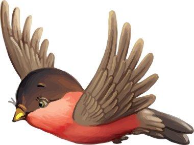 Eurasian Bullfinch bird