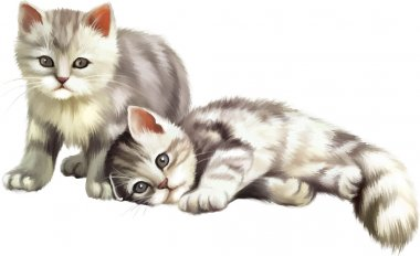 Two cute small gray tabby kittens