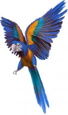 Colorful blue parrot macaw in flight