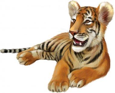Baby tiger lying