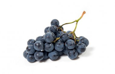 A shot of a bunch of black grapes.