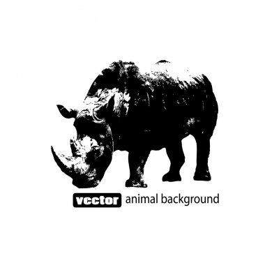 Vector illustration of a Rhino