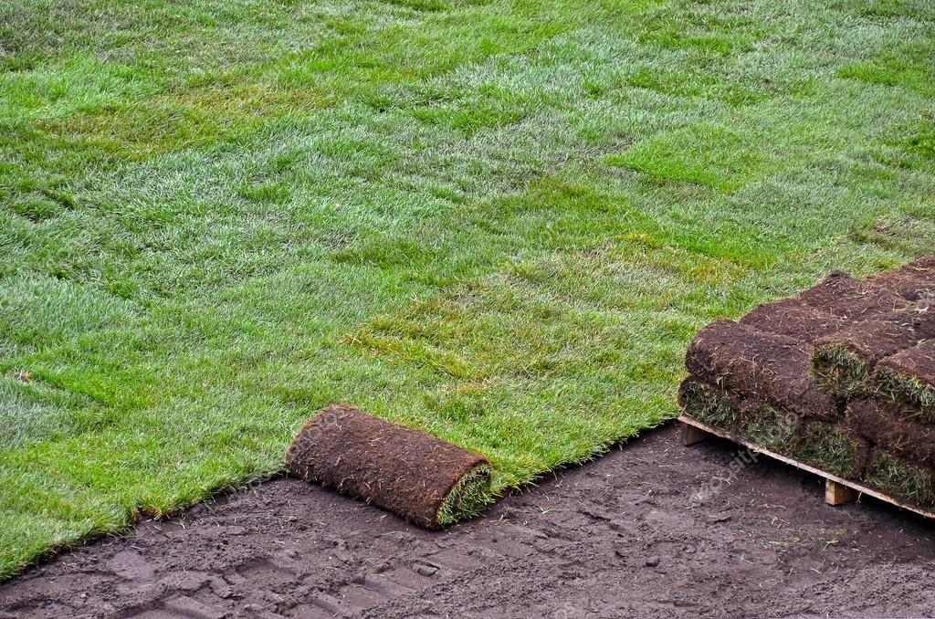 Rolls of new sod