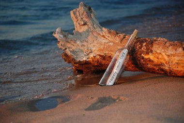New Year's message in a bottle with driftwood