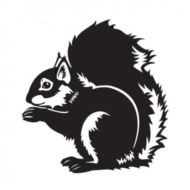 Black and white sitting squirrel