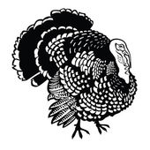 Photo Standing turkey black and white
