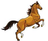 Barna ló tenyésztése