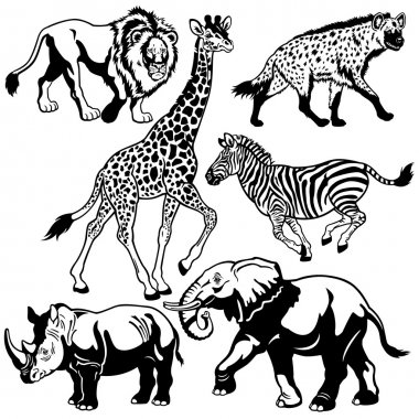 set with africa animals black white
