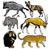 set mit Tieren aus Afrika