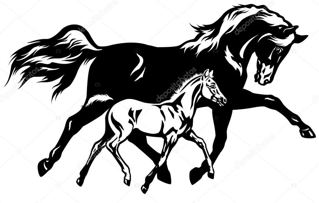 mare with foal stock vector insima 23182416 Ashland MA Re mare with foal stock vector
