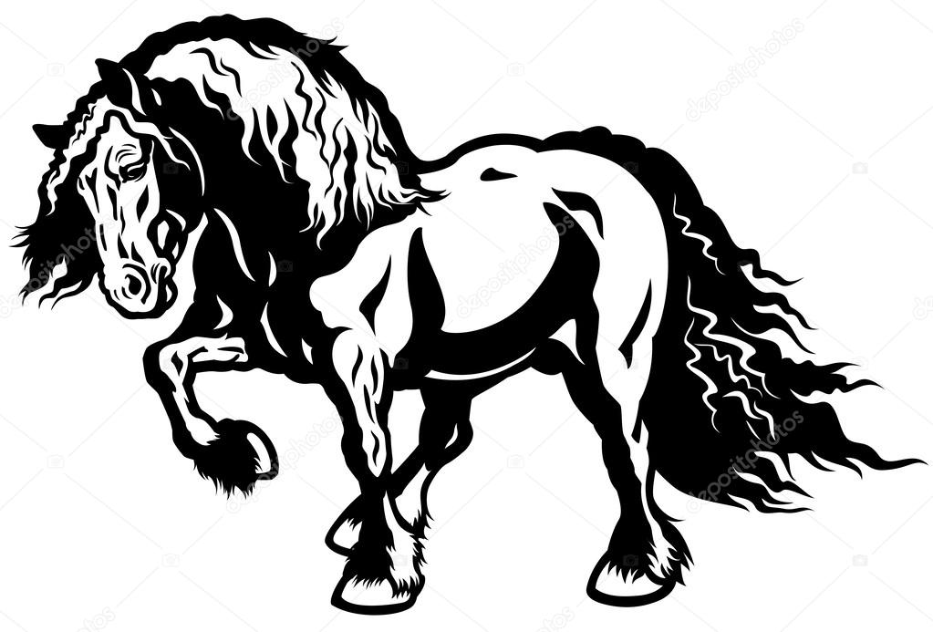Entwurf Pferd Schwarz Weiß Stockvektor Insima 26086033