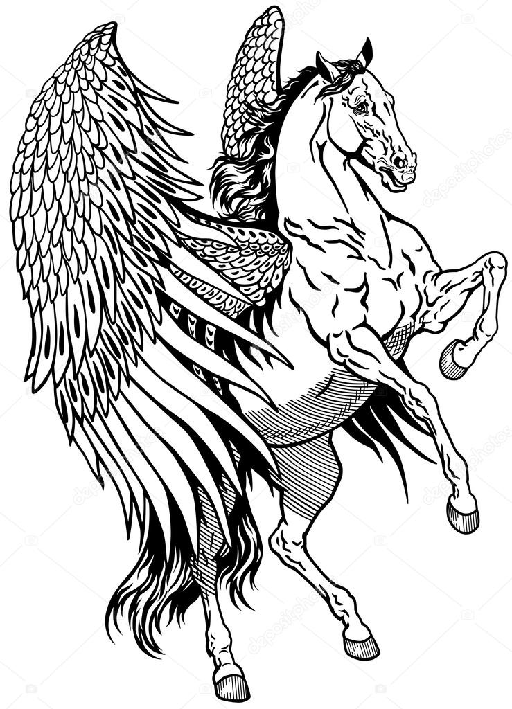 ᐈ Black Horse With Wings Stock Drawings Royalty Free Black Winged Horse Vectors Download On Depositphotos