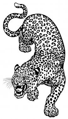 Leopard Tattoo Black White