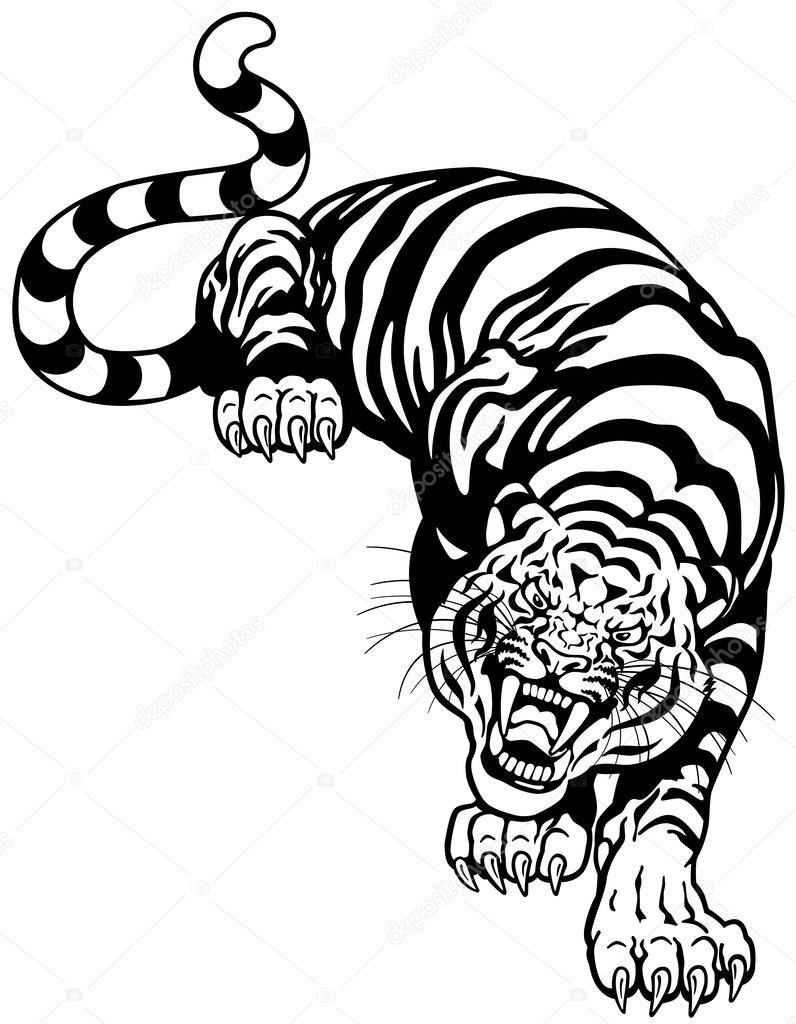tiger schwarz wei stockvektor insima 43109011. Black Bedroom Furniture Sets. Home Design Ideas