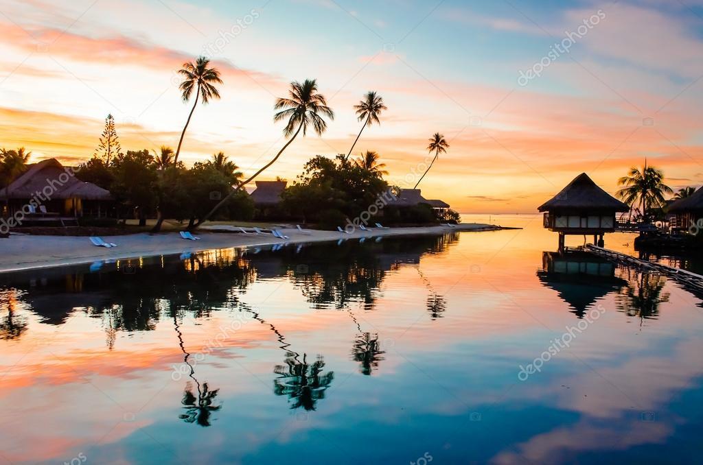 Фотообои Тропический Закат