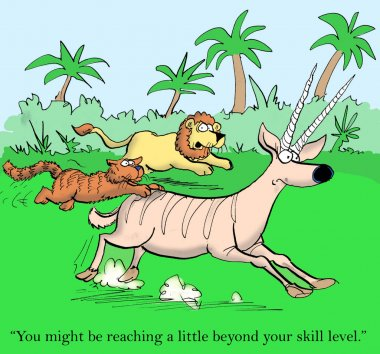 Cat is coached by lion in hunting gazelle