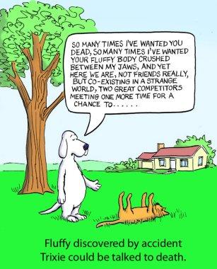 Dog talking cat to death