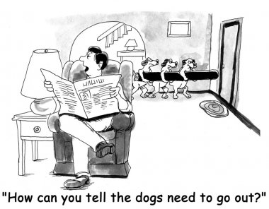 Cartoon illustration. Dogs need to go out