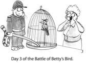 Cat and bird in Civil War gear