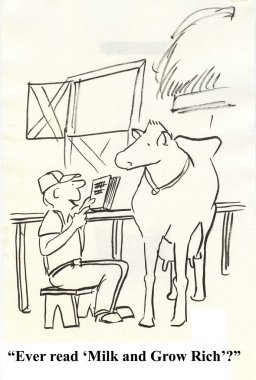 Man talking to a cow